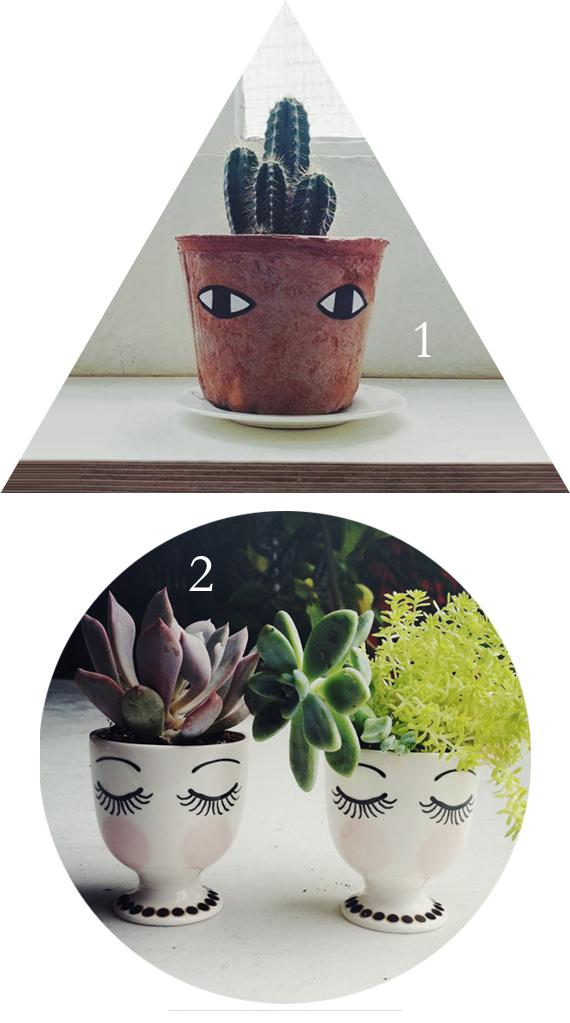 Crafty envy #11 // MiniEco // Cacti!